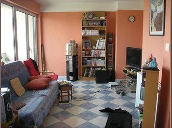Appartager FR - coloc' sympa - Boudonville, Scarpone, Libération, Nancy - €300