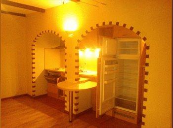 Appartager FR - chambre à louer - l'Orangerie, Strasbourg - €500