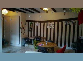 Appartager FR - Chambre disponible dans bel appartement centre - Poitiers, Poitiers - €280