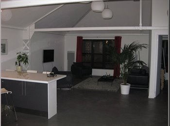 Appartager FR - Colocation Loft - Lille, Lille - €480