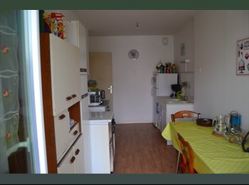 Appartager FR - Recherche collocataire d'urgence ! - Angers, Angers - €210
