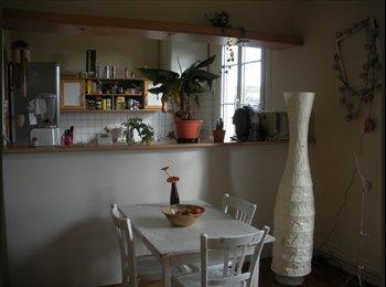 Appartager FR - Cherche colocataire - Aurillac, Aurillac - €250