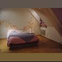 Appartager FR grande chambre dans appart sympa - Place Kleber, Strasbourg, Strasbourg - € 372 par Mois - Image 1