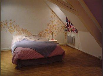 Appartager FR - grande chambre dans appart sympa - Place Kleber, Strasbourg - €372