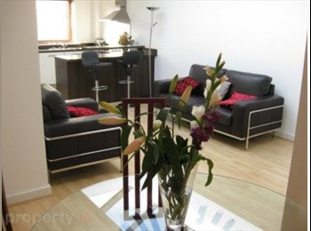 EasyRoommate IE - Professional wanted for nice city apartment - Dublin City Centre, Dublin - €700