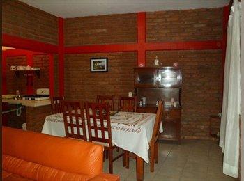CompartoDepa MX Rento Departamento Amueblado en el Centro de la Cd - Tuxtla Gutiérrez - MX$2500 por Mes,MX$577 por Semana - Foto 1