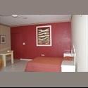 CompartoDepa MX MONOAMBIENTAL APARMET - Mérida - MX$ 3700 por Mes - Foto 1