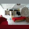 CompartoDepa MX LOFT amueblado en el CENTRO- $4,000 - Centro Histórico, Puebla - MX$ 4000 por Mes - Foto 1