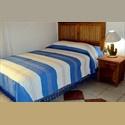 CompartoDepa MX habitaciones individuales amuebladas zona sta rosa - Oaxaca de Juárez - MX$ 1500 por Mes - Foto 1