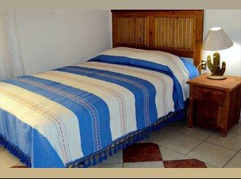 CompartoDepa MX - habitaciones individuales amuebladas zona sta rosa - Oaxaca de Juárez, Oaxaca de Juárez - MX$1500