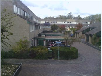 EasyKamer NL - furnished room for expat female student , 11m2 - Merenwijkdistrict, Leiden - €495