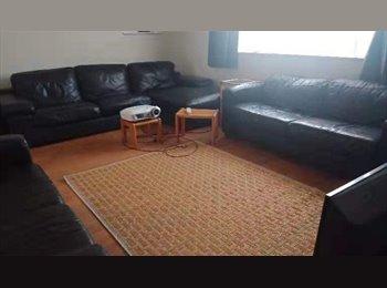 NZ - Room in  fully furnished house $100 per week - Hamilton East, Hamilton - $433