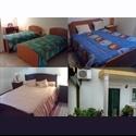 EasyQuarto PT Alugo quarto em Torres Novas - Torres Novas, Santarém - € 200 por Mês - Foto 1