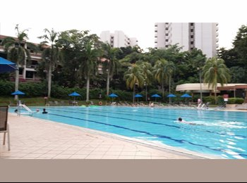 EasyRoommate SG - SINGLE ROOM FOR RENT, SOMMERVILLE PARK - Holland, Singapore - $1500