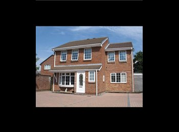 EasyRoommate UK - Modern house in a lovely quiet area - Stubbington, Fareham and Gosport - £425