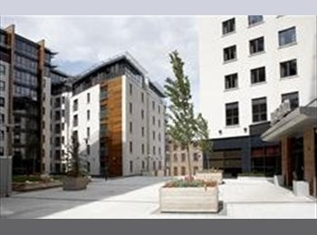EasyRoommate UK - Seeking professionals for 2bed/2bath flat - West Bridgford, Nottingham - £350
