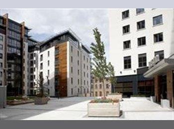 EasyRoommate UK - Double room + own bathroom for professional - West Bridgford, Nottingham - £350