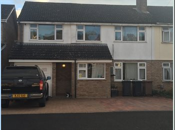 EasyRoommate UK - You will not fined beter place to live. A real must see - Stopsley, Luton - £420