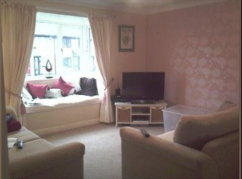 EasyRoommate UK - DOUBLE ROOM IN GORGEOUS SPACIOUS MODERN APARTMENT - High Heaton, Newcastle upon Tyne - £380
