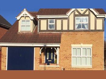 EasyRoommate UK - double room to rent in  Alvaston DE24 Derby - Alvaston, Derby - £400