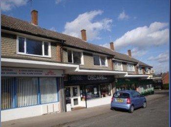EasyRoommate UK - Remarkable 2 Bedroom Flat in Mount Nod-CV5 Area - Whoberley, Coventry - £450