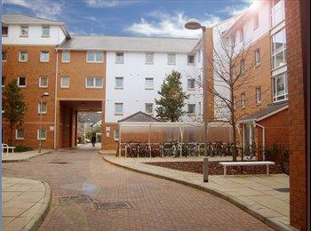 EasyRoommate UK - STUDENT ACCOMMODATION CARDIFF - Cardiff Bay, Cardiff - £396