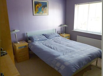 EasyRoommate UK - Large Double Room for Rent - Ipswich, Ipswich - £350
