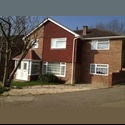 EasyRoommate UK Room to let - Gossops Green, Crawley - £ 430 per Month - Image 1