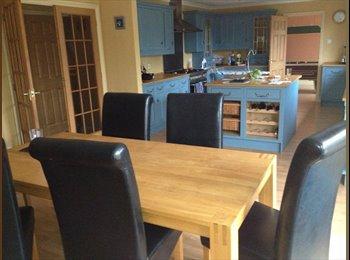 EasyRoommate UK - Room to let - St. Austell, St. Austell - £280