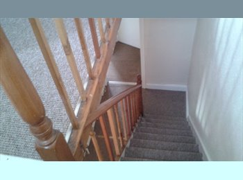 EasyRoommate UK - Student rooms to let £250 pppm including bills - Nottingham, Nottingham - £250