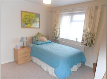 EasyRoommate UK - Double Size, Spacious Room in Cosy Home - King's Worthy, Winchester - £450