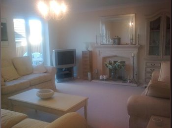 EasyRoommate UK - Professional - Silkstone Common, Barnsley - £330