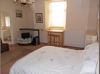 EasyRoommate UK - LUXURY EXTRA-LARGE ENSUITE SINGLE ROOM - Combeinteignhead, Newton Abbot - £475