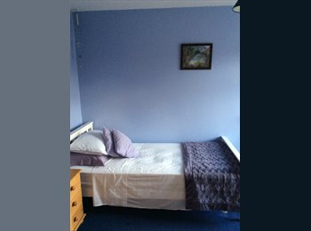 EasyRoommate UK - Friendly house - Shefford, Shefford - £400