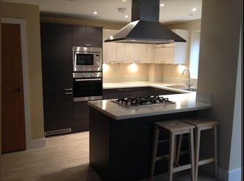 EasyRoommate UK - 1 ensuite room left in a luxury modern town house - Colchester, Colchester - £560