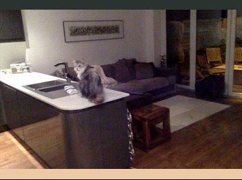 EasyRoommate UK - Large Double Bedroom in Modern 4 bedroom house - Rainham, Gillingham - £500