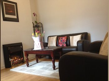 EasyRoommate UK - Spacious double bedroom to let beside QUB - Ormeau, Belfast - £270