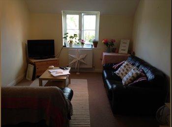 EasyRoommate UK - Large modern double en-suite room in v clean flat - Compton, Winchester - £500