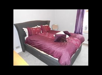 EasyRoommate UK - imaculate double room for rent - Penwortham, Preston - £350