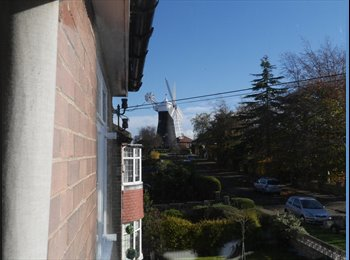 EasyRoommate UK - Double bedroom avaiable in Semi Detached House - Acomb, York - £436