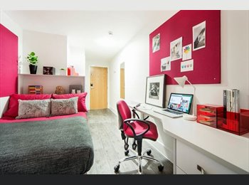 EasyRoommate UK - 1 Ensuite Room in 6 Bed Flat Avalible for Jan 2015 - Huddersfield, Kirklees - £455