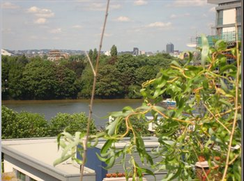 EasyRoommate UK - Room in River View 5th floor Penthouse - Earlsfield, London - £900