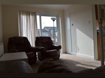 EasyRoommate UK - Urgently! One spacious double room to rent! - Colchester, Colchester - £310