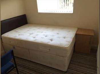 EasyRoommate UK - Urgent!!Furnished room available - Knighton, Leicester - £300
