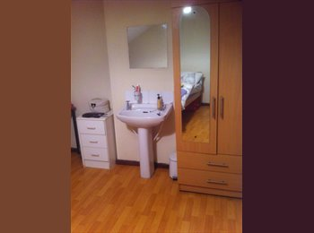 EasyRoommate UK - Room in shared student house - Ormeau, Belfast - £240