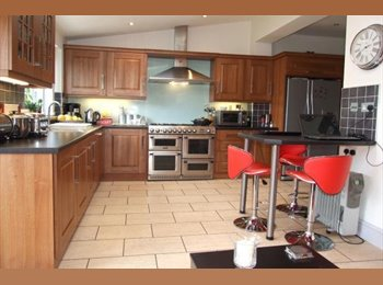 EasyRoommate UK - Stunning Single Room Available - Southend-on-Sea, Southend-on-Sea - £500