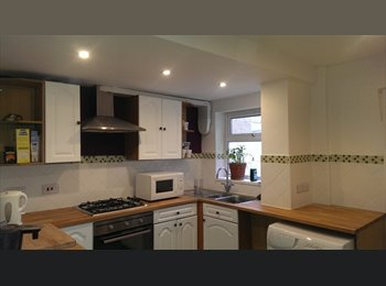 EasyRoommate UK - 2 rooms to let  - Rodbourne, Swindon - £399