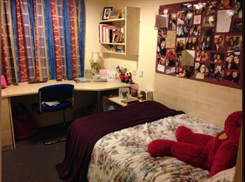 EasyRoommate UK - Double ensuite room to rent - Canton, Cardiff - £472