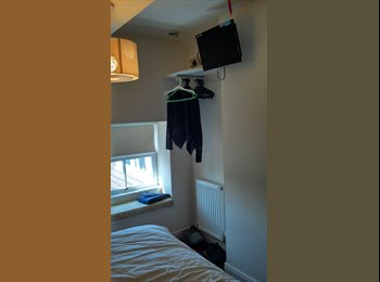 EasyRoommate UK - Room to let in family home, Bow Street - Penrhyn-coch, Aberystwyth - £347