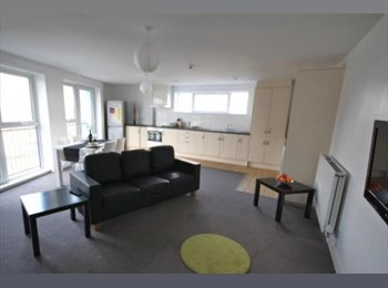 EasyRoommate UK - Luxury Penthouse King Sized En Suite Room Highcross £108 - Leicester Centre, Leicester - £468